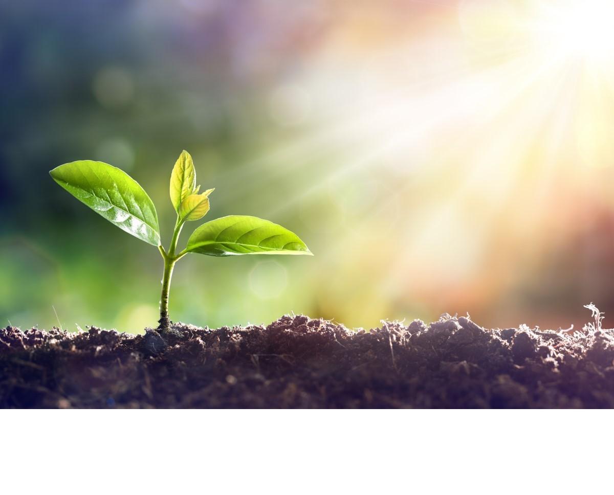 Gärtnerei- und Baumschulbedarf klein